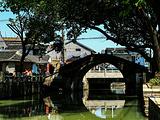 沽岛旅游景点攻略图片