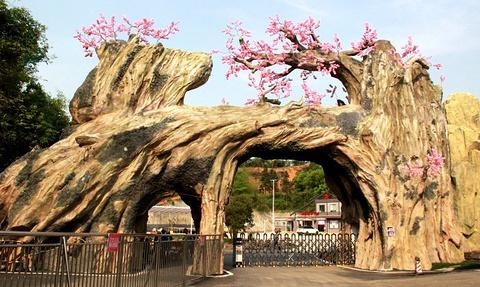 浔龙河樱花谷旅游景点攻略图