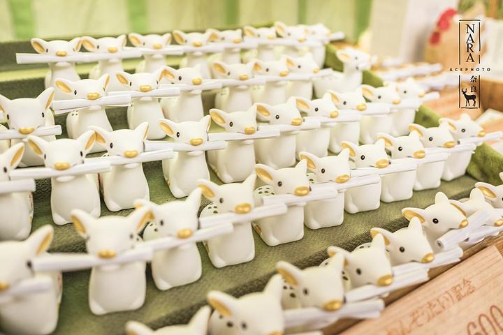 """""""在奈良公园的时候我们已经把鹿仙贝饼全部喂完了,可能是因为冉先森的包中还残留余香,一只小鹿冷不丁..._春日大社""""的评论图片"""