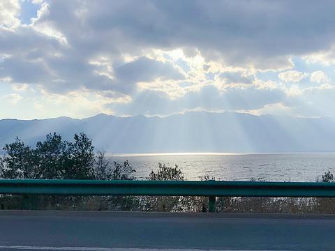 洱海公园旅游景点图片