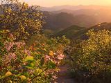 朝阳旅游景点攻略图片