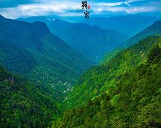 【龙泉】山水艺境,隐于山谷深处的世外桃源