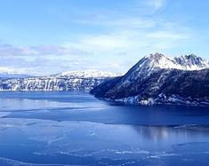 送你一杯雪 海鸟与冰花——北海道十三天冬日幻想