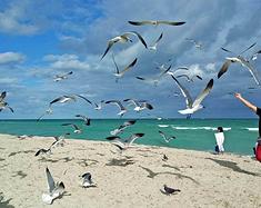 【加勒比行-3】小古巴-南沙滩