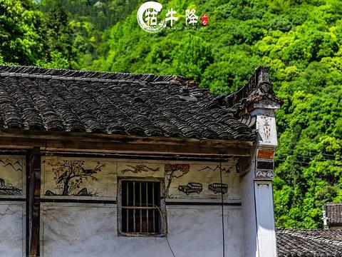牯牛降龙飞山庄旅游景点图片