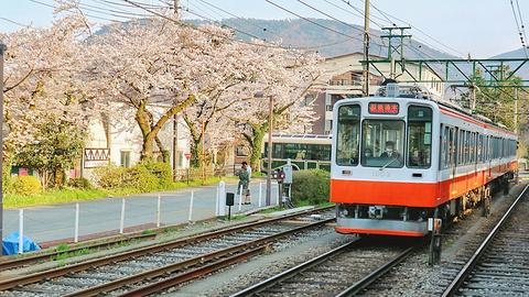 箱根町旅游图片