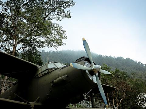 热带植物园旅游景点图片