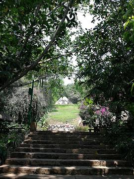 基诺山寨旅游景点攻略图