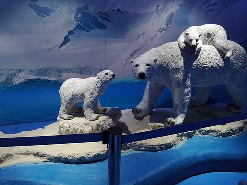 乔波冰雪世界旅游景点图片