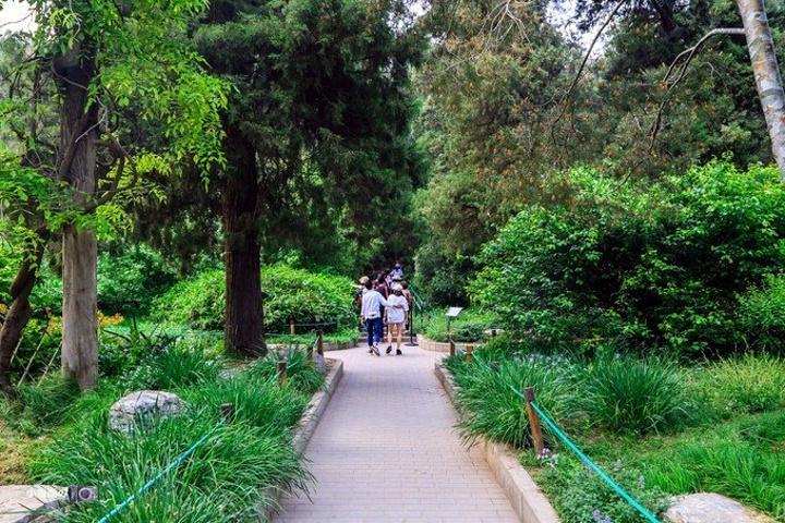 """""""景山公园位于故宫北面,为元、明、清三朝御苑,是一座环境优美的皇家园林,距今已有八百多年历史_景山公园""""的评论图片"""