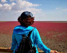 跨过鸭绿江(续)……第六站盘锦红海滩