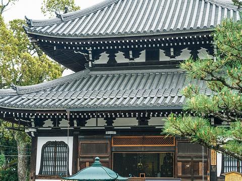 金戒光明寺旅游景点图片