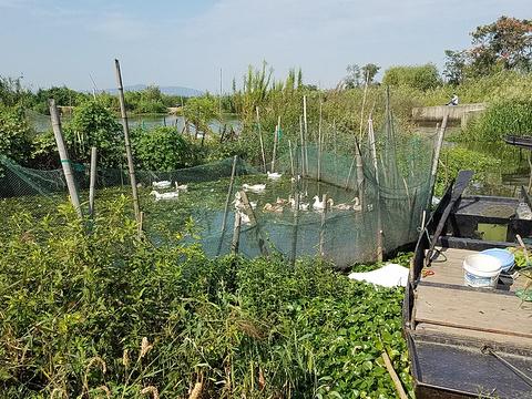 苏州太湖园博园旅游景点图片