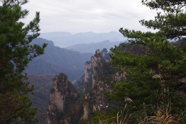 """""""...怕也就是黄山可以出其右,来玩的话,建议从武陵源做缆车上,节省体力,从金鞭溪下,可以看沿途的风景_张家界国家森林公园""""的评论图片"""