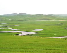 最美草原呼伦贝尔自由行——呼伦贝尔草原