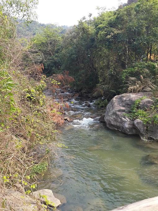 河源万绿谷_河源万绿谷休闲游-东源旅游攻略-游记-去哪儿攻略