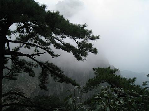 庐山旅游景点图片