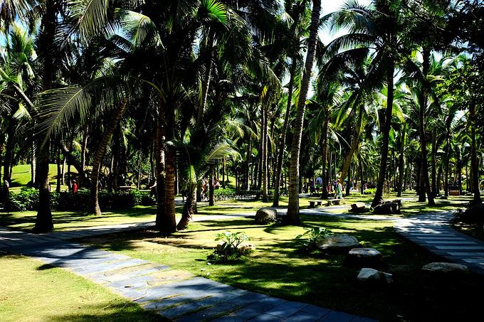 三亚自然博物馆图片