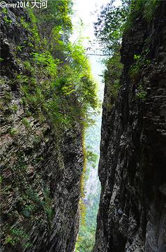 张家界大峡谷旅游景点攻略图