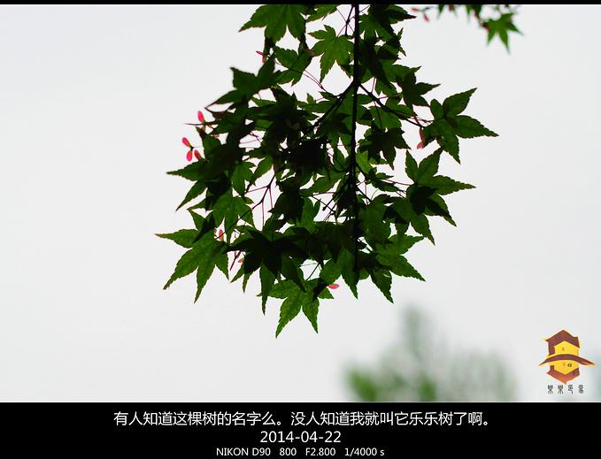 寒山寺图片