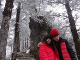 西岭雪山旅游景点攻略图片