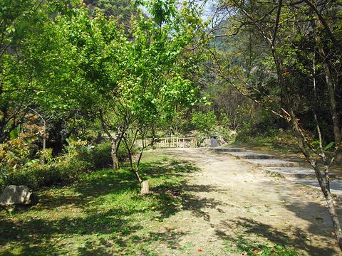 福州国家森林公园旅游景点图片