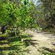 福州国家森林公园