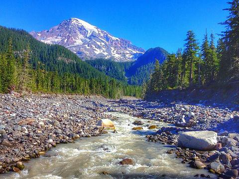 雷尼尔山国家公园旅游景点图片