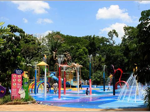 新加坡动物园旅游景点图片