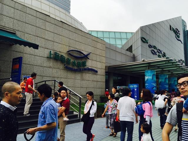 """""""       第三,馆内光线很暗,最好带个像素高点的相机。然后乘坐电梯直接上了三楼,开始参观_上海海洋水族馆""""的评论图片"""