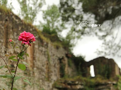 Ninfa花园旅游景点图片