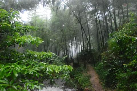 红河谷森林公园旅游景点攻略图