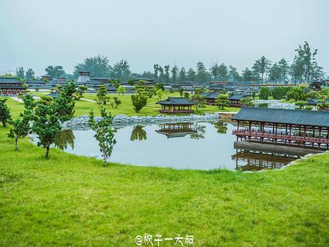 大明宫遗址旅游景点图片