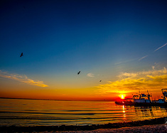 L.A波罗的海之旅——爱沙尼亚篇