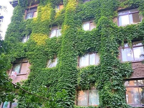 北京林业大学旅游景点图片