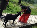 不丹旅游景点攻略图片