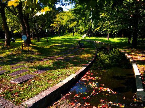 万博纪念公园旅游景点图片