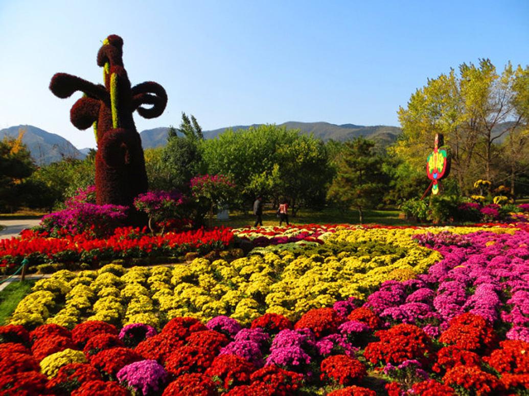 北京的四季美景,你想不想看看