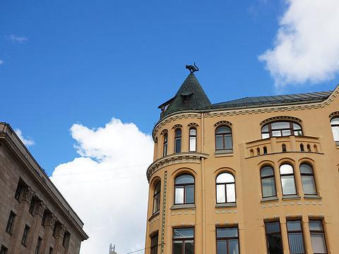 里维广场和猫宅旅游景点图片