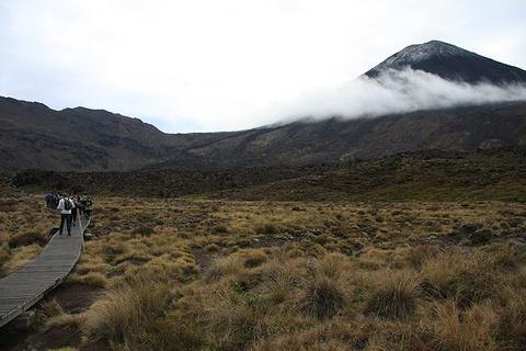 汤加里罗徒步穿越旅游景点攻略图