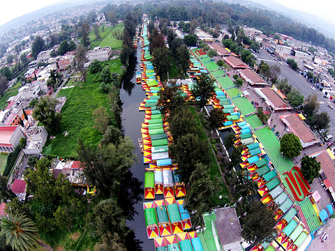 Xochimilco旅游景点图片