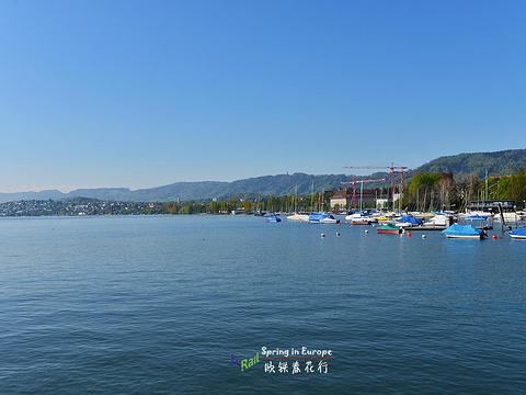 苏黎世湖旅游景点图片