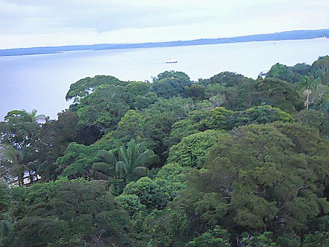 亚马逊河图片