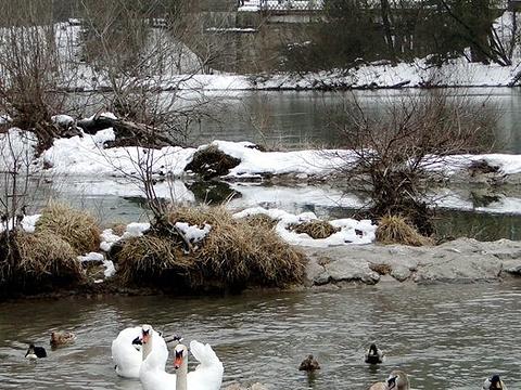 莱希河旅游景点图片