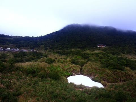 阳明山牛奶湖旅游景点图片