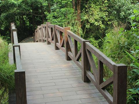 浣花溪公园旅游景点图片