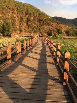 走婚桥旅游景点攻略图