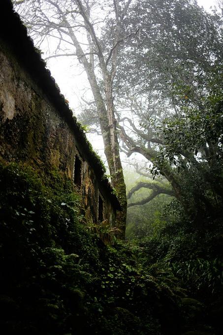 辛特拉修道院图片