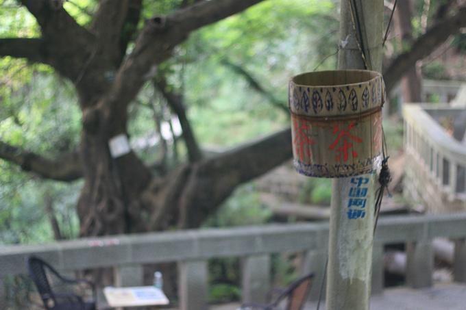南山,景点,重庆图片