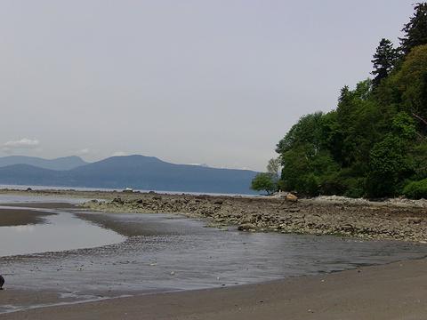 雷克海滩的图片